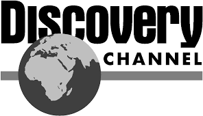 Discovery grey