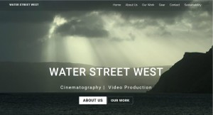 WSWVideo Home page screenshot